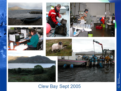 Clew Bay September 2005
